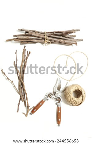 Pruning concept,  Secateurs with fruit twigs on white - pruning concept - stock photo