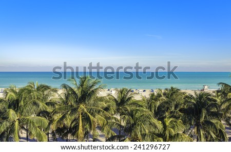 Public beach behind the palm trees in Miami Beach, Florida - stock photo