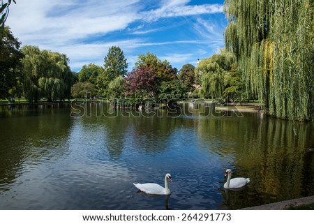 Public Gardens in Boston - stock photo