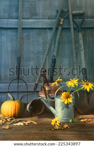 Pumpkin and flowers with tools in garden shed - stock photo