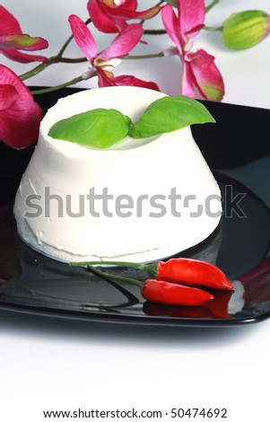 Ricotta,  italian  cheese - stock photo