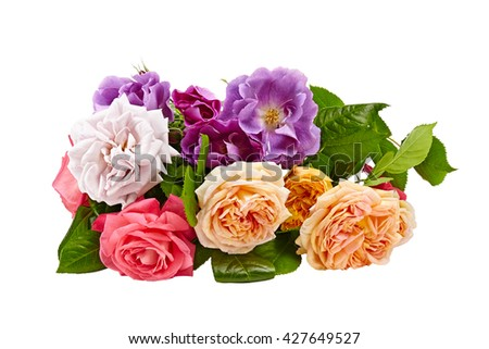 roses bouquet on a white background - stock photo