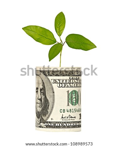 sapling growing from dollar bill - stock photo