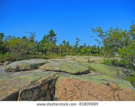 Scenic view from the summit of Cadillac Mountain in Acadia National Park in Maine, with pink granite boulders, lichen and low trees, and azure sky above. - stock photo