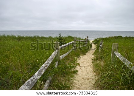 """Sea Trail"" A beach meadow along the coastline in Cape Cod, Massachusetts. - stock photo"