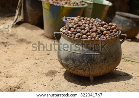 """Shea nuts to prepare butter in Bamako. The English name """"shea"""" comes from sí, the tree's name in the Bamana languages of Mali. The French name """"karité"""" comes from ghariti.  - stock photo"""