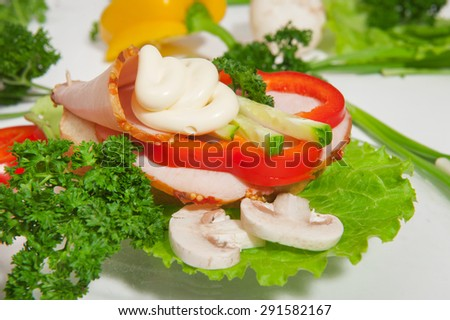 slices of meat with vegetables and sauce - stock photo