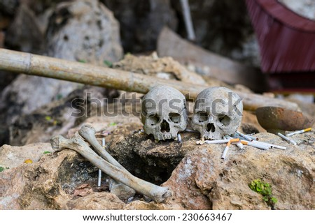 """""""Smoking kills"""" symbol. Human bones and skulls with cigarette offerings in Londa (Tana Toraja, South Sulawesi, Indonesia), traditional burial site with coffins in caves or hanging from cliffs. - stock photo"""