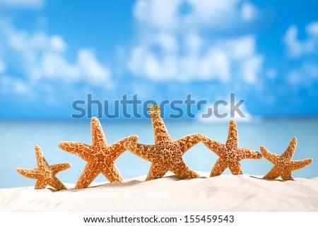 5 star holidays deal !  starfish  with ocean , beach and seascape, shallow dof - stock photo