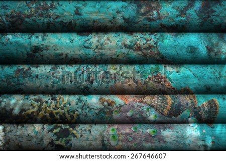 """""""stonefish on coral reef"""" Mural. The wood painting concept - stock photo"""