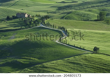 Stunning Landscape in Tuscany, Italy  - stock photo