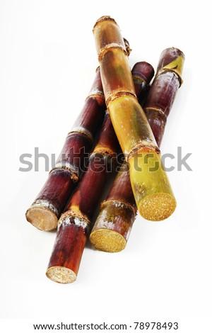 Sugar Cane  on white background - stock photo