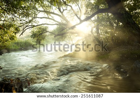 Summer morning on the river - stock photo