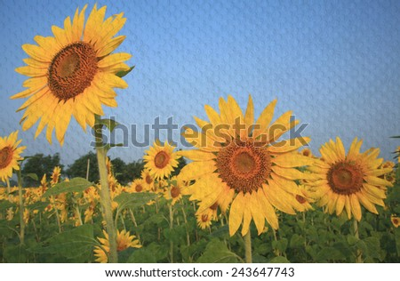 """sunflower field in Thailand"" The paper painting concept - stock photo"