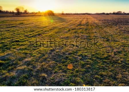 Sunrise on a meadow - stock photo