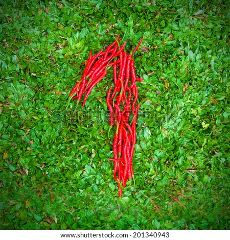 """""""1"""" symbol shaped group of red chili peppers on the green grass - stock photo"""