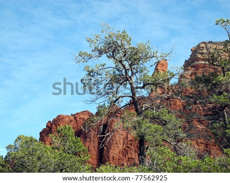 Tall trees and rocky spires characterize the rugged terrain around Sedona, Arizona. - stock photo