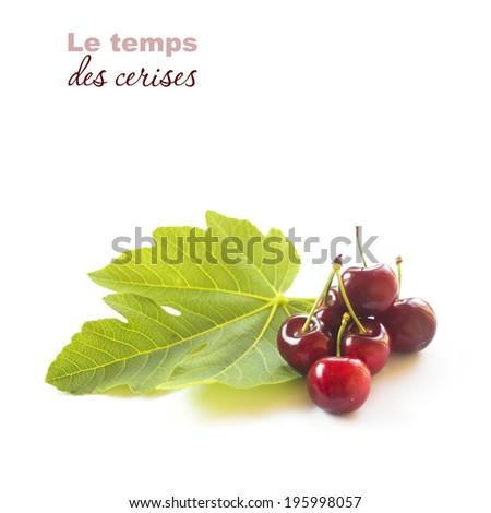 """Temps des cerises"" illustration. Cherries isolated on white - stock photo"