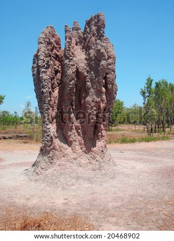 Termite mound - stock photo