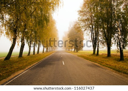 the asphalted road to an autumn season. Belarus - stock photo