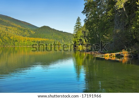 The lake surrounded by a dense fir forest - stock photo