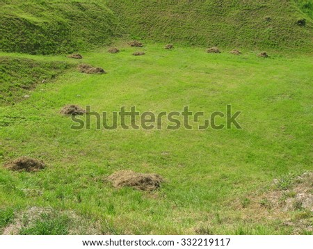 The mole mound in the green field - stock photo