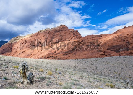 The Red Rock canyon near las vegas , Nevada. - stock photo