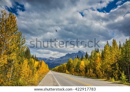 Travel to the Bow River Canyon in September.  Canadian Rockies, Great Banff. Excellent highway and surrounded by autumnal woods - stock photo