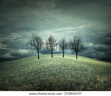 4 trees in an autumnal landscape with bad weather - stock photo