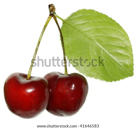 two cherries close up isolated - stock photo