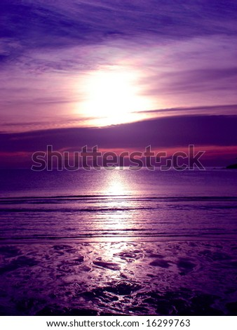 Violet  dream - stock photo
