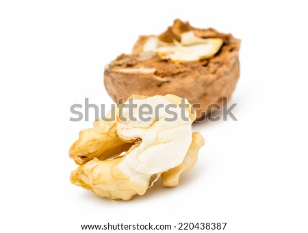 walnut isolated on a white background. - stock photo