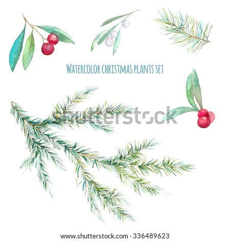 Watercolor Christmas plants set. Hand drawn holly branch, mistletoe berries and leaves, Christmas tree needle branches isolated on white background. Artistic floral design elements - stock photo