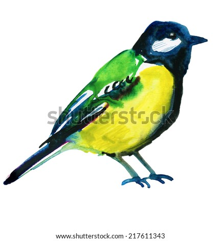 Watercolor picture - blue tit - stock photo