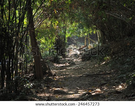 4wd tyre track route - stock photo