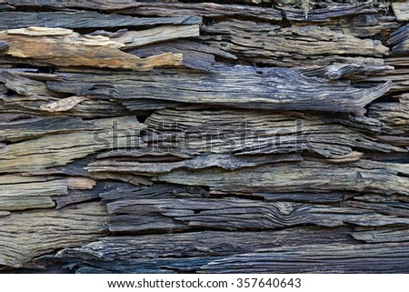 weathered old plank wood wall , ruin wooden timber texture background - stock photo