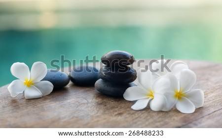 White frangipani with black stones, spa settings  - stock photo