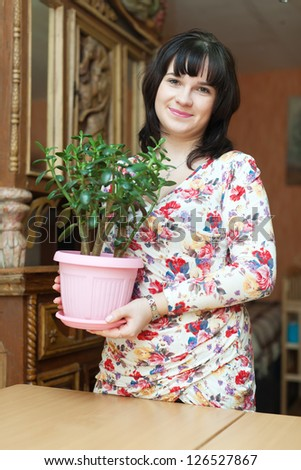 woman with  jade in flowering pot at home - stock photo