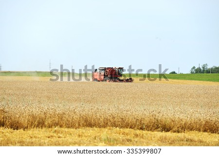working harvester on  wheat field - stock photo