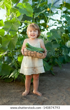 2 years baby girl picking cucumber in  greenhouse - stock photo