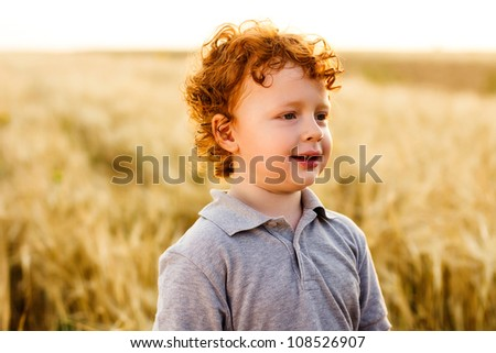 3 years old boy on wheat field - stock photo
