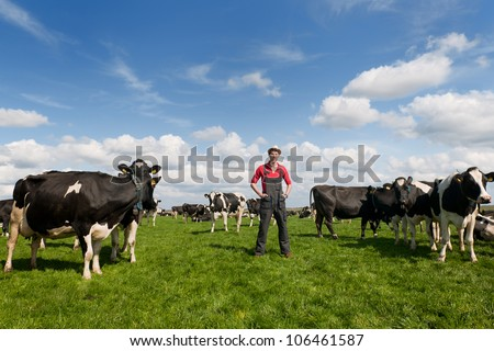 young farmer proud in field with livestock cows - stock photo