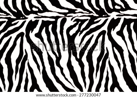 zebra skin pattern for background - stock photo