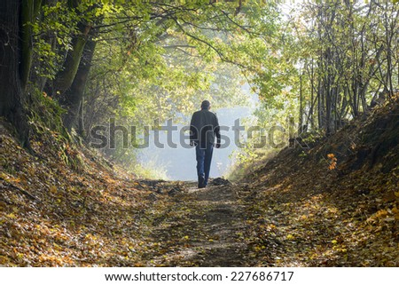 A alone man walking along a forest path in autumn - stock photo
