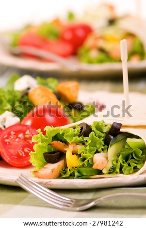A appetizing chicken wrap with lots of vegetables and a side salad. - stock photo