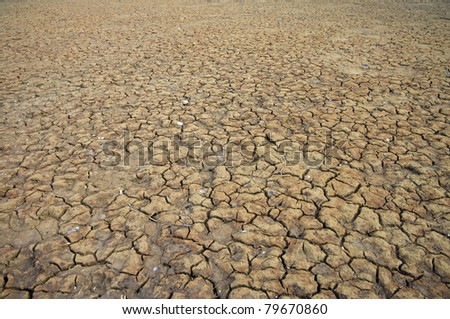 A area of dry land for a drought concept or metaphor. - stock photo
