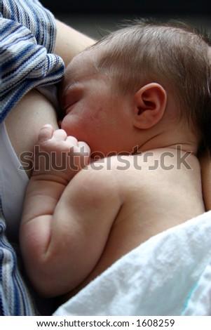 A baby breastfeeds. - stock photo