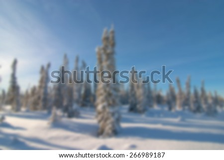 A background blur image of spruce trees covered in fresh snow on a sunny winter day - stock photo