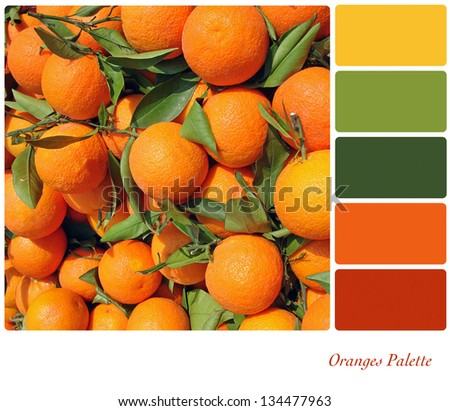 A background of fresh oranges on a market stall, in a colour palette with complimentary colour swatches. - stock photo