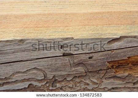 A background of wood - stock photo